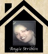 Angie Stribl…, Real Estate Pro in Raleigh, NC