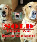 David Clesceri, Real Estate Agent in Brea, CA