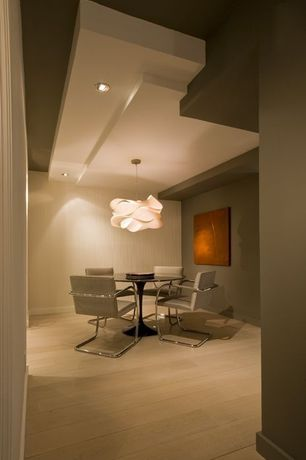 Contemporary Dining Room with flush light, Laminate floors