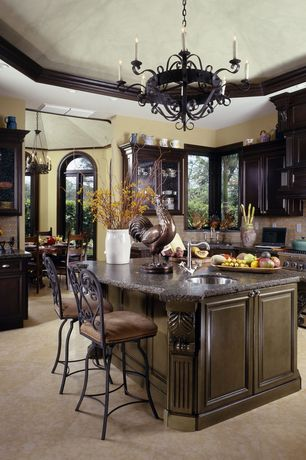 Traditional Kitchen with Kitchen island, Chandelier, Custom hood, High ceiling, Framed Partial Panel, U-shaped, Glass panel