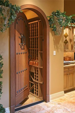 Mediterranean Wine Cellar with terracotta tile floors, Designer Stone Lady's Head Wall Planter, Barn door