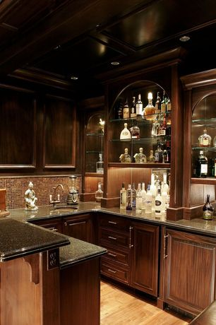 Traditional Bar with Box ceiling, Built-in bookshelf, Granite countertop, Glass mesh-mounted mosaictile, Hardwood floors