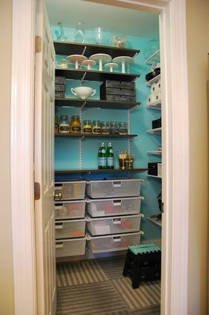 Contemporary Pantry with Built-in bookshelf, Flat panel cabinets, Carpet