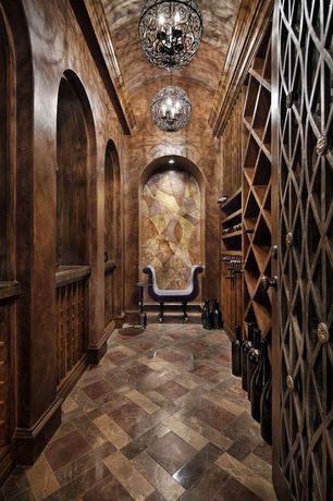 Traditional Wine Cellar with interior wallpaper, Built-in bookshelf, specialty door, Cathedral ceiling, can lights