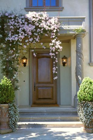 Traditional Front Door with exterior stone floors, Casement, Restoration hardware - jefferson urn, Clematis, Raised beds