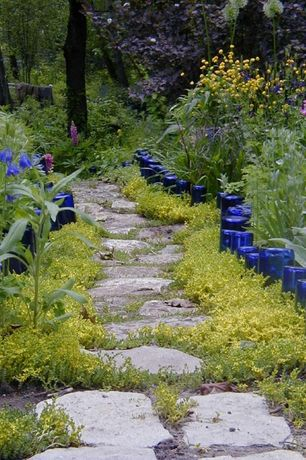 Eclectic Landscape/Yard with exterior stone floors, Pathway, Lupine 'Gallery Blue', Granite Natural Riser Steps