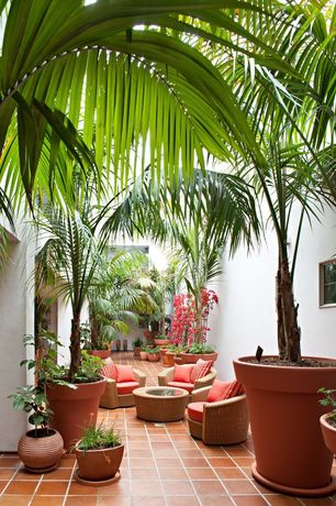 Tropical Patio with Casement, exterior tile floors, exterior terracotta tile floors