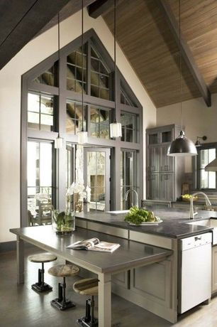 Craftsman Kitchen with One-wall, dishwasher, High ceiling, Transom window, French doors, Flat panel cabinets, Casement, Flush