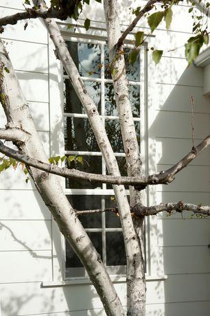 Exterior of Home