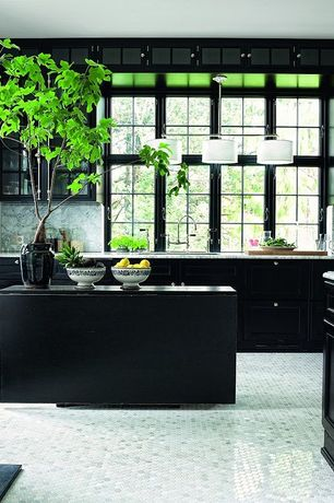 Contemporary Kitchen with 15 in. x 21 in. Cast Stone Sharp Leaf Urn in Charcoal Finish, L-shaped, Kitchen island, Glass panel