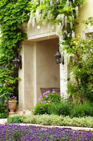 Mediterranean Landscape/Yard with Lavender Hidcote, Raised beds