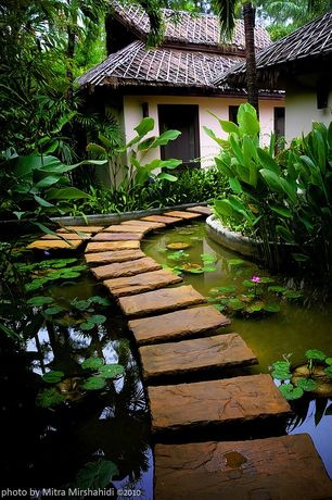 Tropical Landscape/Yard with Pathway, Raised beds, Pond, Natural stone pathway