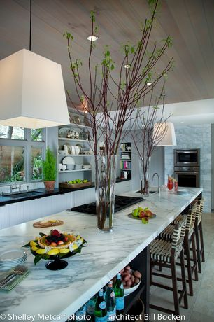 Contemporary Kitchen with Kitchen island, Pendant light, Soapstone counters, built-in microwave, European Cabinets, Flush