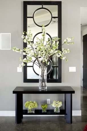 Contemporary Entryway with Paint, Aspire Contemporary Mirror