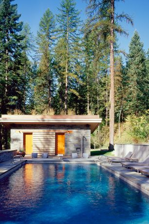 Rustic Swimming Pool with six panel door, exterior stone floors, Lap pool