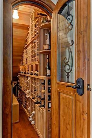 Traditional Wine Cellar with flush light, Hardwood floors, Built-in bookshelf, Glass panel door