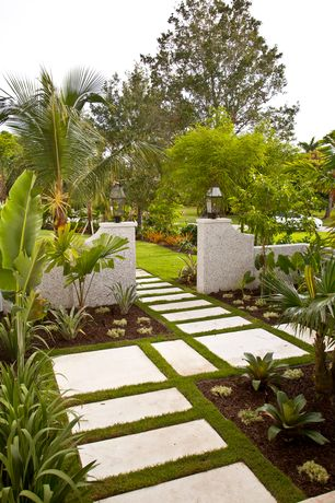 Tropical Landscape/Yard with Oversize concrete pavers, Fence, Cold Hardy Banana Tree, Pathway, Precast Concrete Slab
