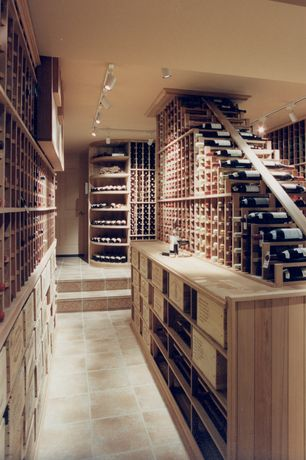 Contemporary Wine Cellar with Custom wine storage, Built-in bookshelf, Riedel Vinum Chardonnay 8 Piece Set, specialty door