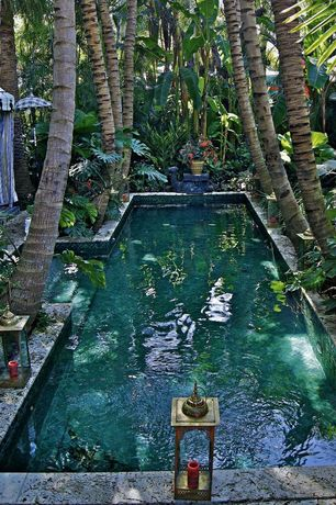 Tropical Swimming Pool with exterior tile floors