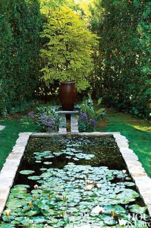 Traditional Landscape/Yard with Custom stone designed pond, Lily pad, Outdoor planter, Pond