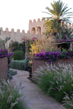 Mediterranean Landscape/Yard with Bougainvillea Royal Purple, Pathway, Raised beds, exterior tile floors, Trellis, Fence
