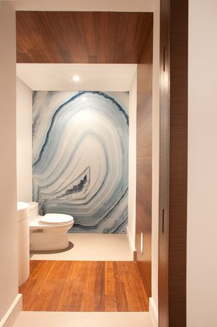 Contemporary Powder Room with Mural, Frameless, Pedestal sink, Flat panel cabinets, Agate Blue Onyx, Agate, Hardwood floors