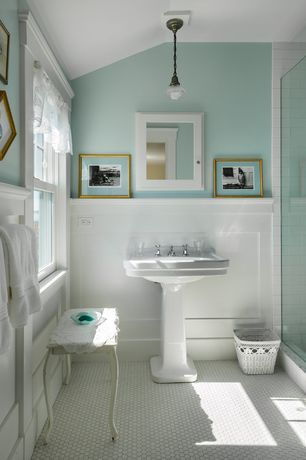 Traditional Full Bathroom with Flat panel cabinets, Built-in bookshelf, Wainscotting, Pedestal sink, penny tile floors, Flush