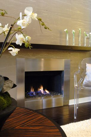 Modern Living Room with Stainless steel fireplace surround, Fire sense wall mounted electric fireplace, Hardwood floors