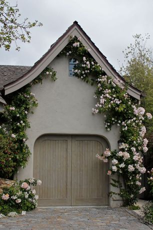 Cottage Garage with Arched window, specialty door