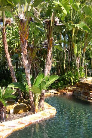 Tropical Swimming Pool with Pool with hot tub, exterior stone floors, Raised beds
