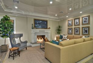 Contemporary Living Room with Crown molding, Cement fireplace, Hardwood floors