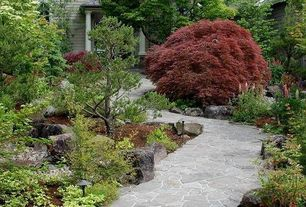 Contemporary Landscape/Yard with exterior stone floors, Pathway, Japanese maple tree, Stone pathway