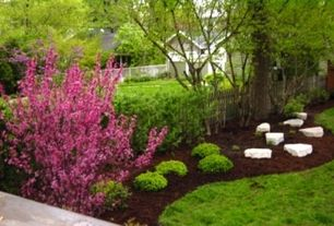 Traditional Landscape/Yard with Paint