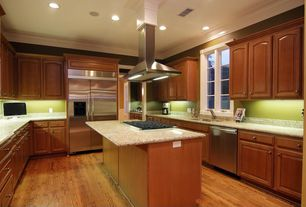 Contemporary Kitchen with electric cooktop, Built In Refrigerator, built-in microwave, Simple Granite, dishwasher, Casement