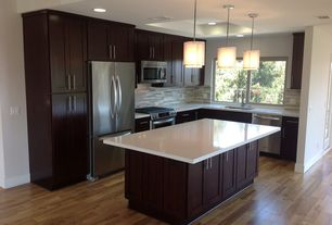 Contemporary Kitchen with Hardwood floors, Flush, Kitchen island, Transglobe lighting 3 light drum pendant, European Cabinets