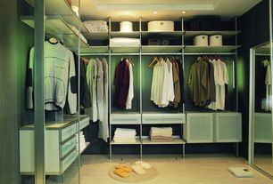 Modern Closet with picture window, High ceiling, Laminate floors, Paint, can lights
