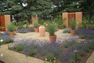 Mediterranean Landscape/Yard with OnlinePlantCenter 1 gal. Munstead English Lavender Plant, Italian Large Terracotta Cone