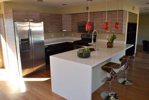Contemporary Kitchen with U-shaped, Danze chrome pre-rinse high-arc kitchen faucet, Breakfast bar, Flush, Pendant light