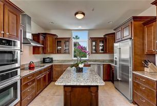 Traditional Kitchen with Raised panel, Simple Granite, U-shaped, Simple granite counters, Glass panel, Concrete floors