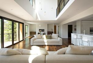 Modern Living Room with sliding glass door, Hardwood floors, Cathedral ceiling, can lights, picture window, Pendant light