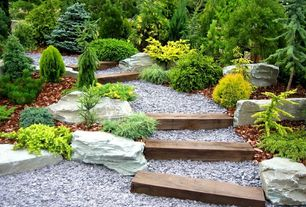 "Eclectic Landscape/Yard with Severe Weather #2 Pressure Treated Lumber (4"" x 6"" x 12""), exterior stone floors, Pathway"