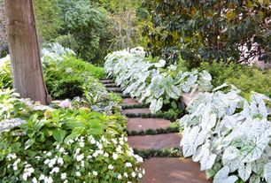Rustic Landscape/Yard with Private backyard, Private garden