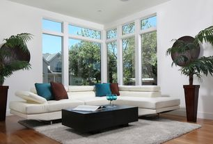 Modern Living Room with Hardwood floors, Standard height, picture window, can lights