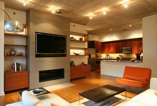 Contemporary Living Room with Hardwood floors, Standard height, flush light, insert fireplace, Fireplace, Built-in bookshelf