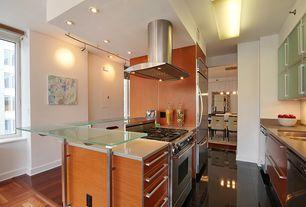 Modern Kitchen with two dishwashers, U-shaped, Flush, Limestone, Silestone - Haiku, Hardwood floors, Glass panel, flush light