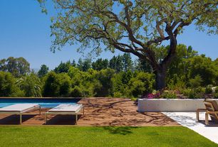 Contemporary Swimming Pool with Lap pool, Raised beds