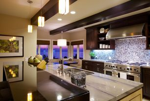 Contemporary Kitchen with Quartzite elegant brown polished, Wall Hood, Framed Partial Panel, Standard height, Undermount sink