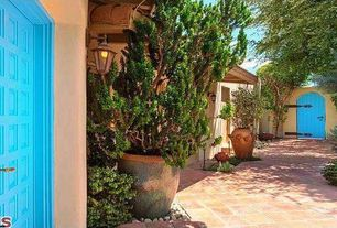 Mediterranean Entryway with terracotta tile floors, specialty door