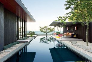 Contemporary Swimming Pool with Lap pool