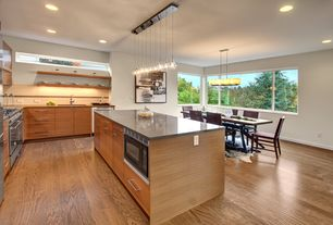 Modern Kitchen with dishwasher, picture window, European Cabinets, Built In Refrigerator, Wall Hood, Gray quartz countertop
